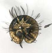 monica lamberti tocado plumas