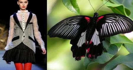 mariposa negra roja vestido
