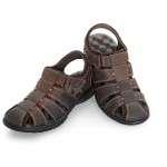 calzado 3