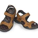 calzado 4