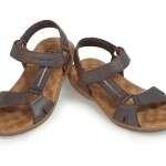 calzado 8