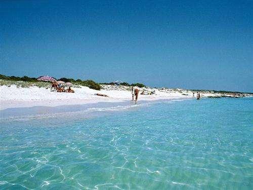 playa-mallorca