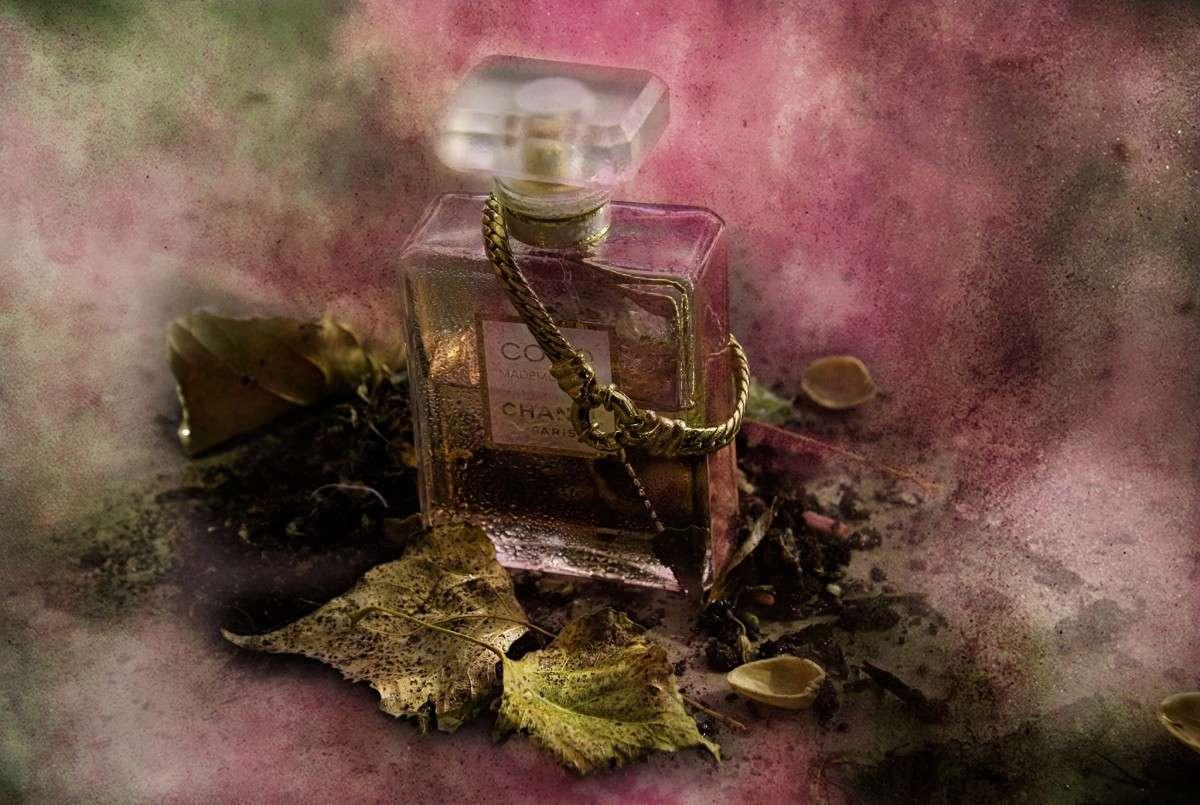 perfumes especiales para naviad