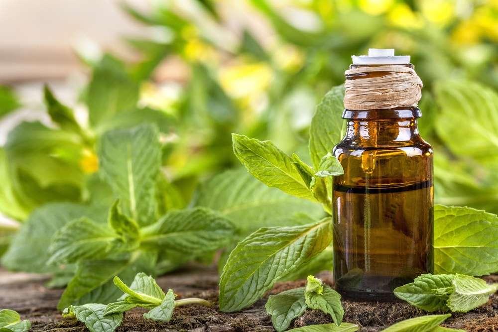 beneficios aceite ricino 2