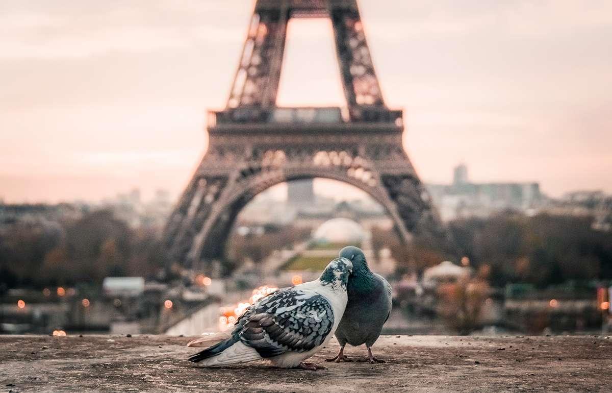 ciudades europa donde mas se liga